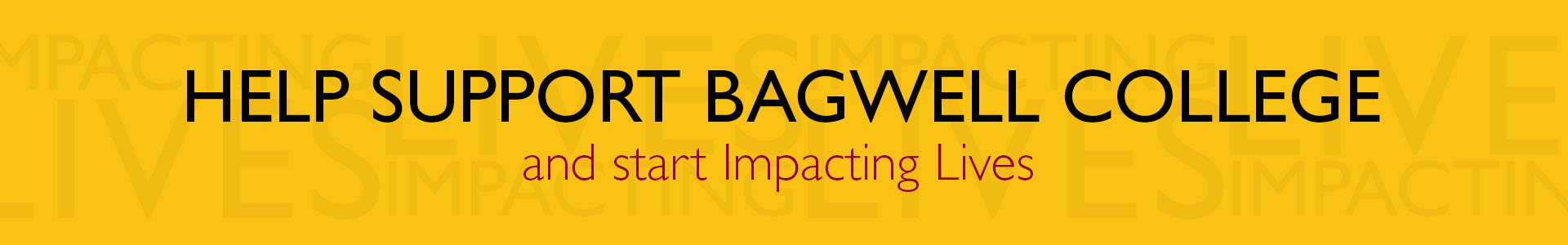Support Bagwell College amd start impacting Lives